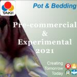 Takii Pot & Bedding