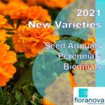 floranova1